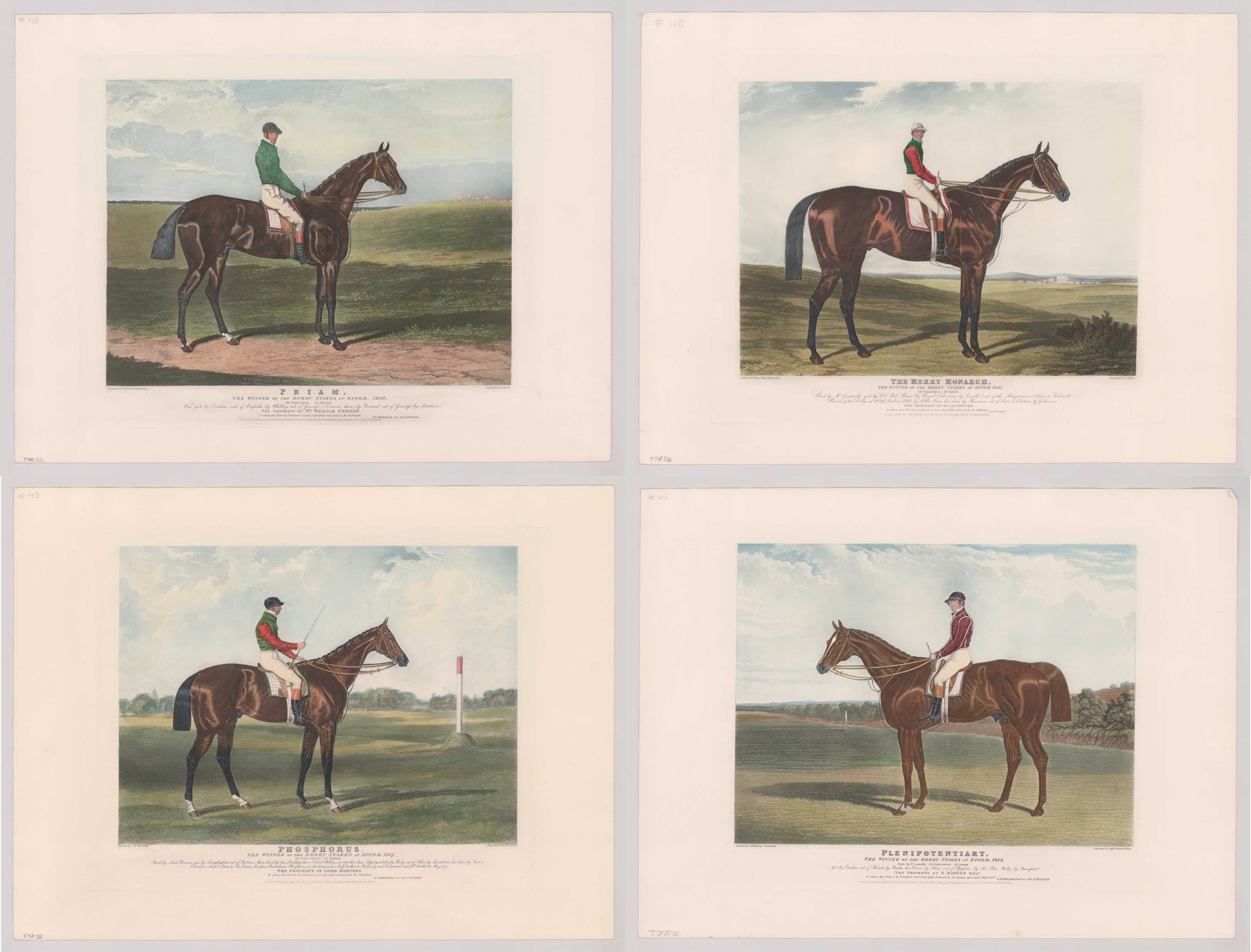 Four Epsom Downs Champion Horse Racing Engravings