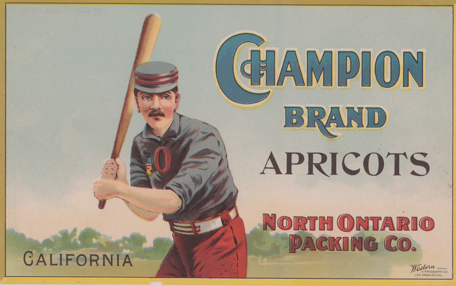 Very Scarce Ca.1900 Champion Brand Apricots Label