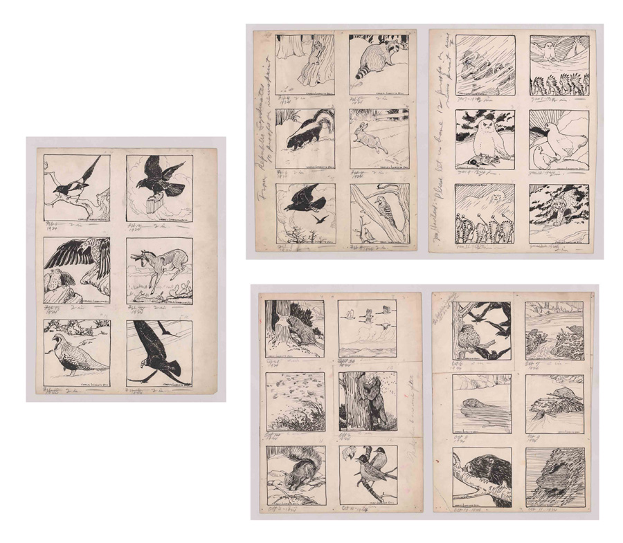 Charles Livingston Bull Original Drawings 1923-4