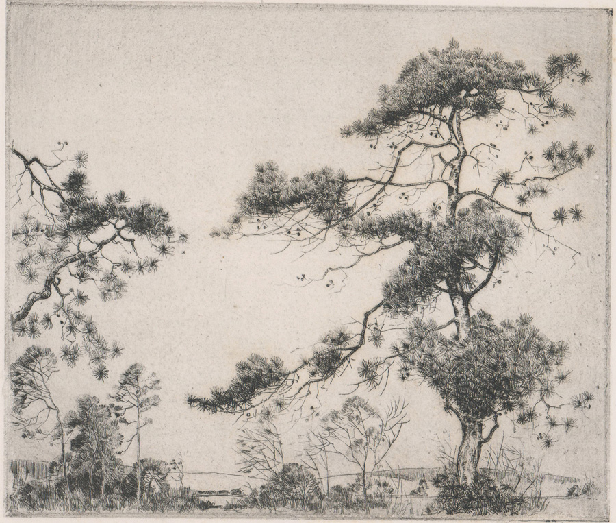 Alfred Heber Hutty Signed Etching [Pine Trees]