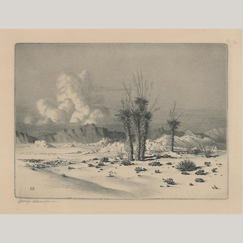 George Elbert Burr Etching